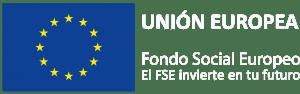 Logotipo-FSEweb